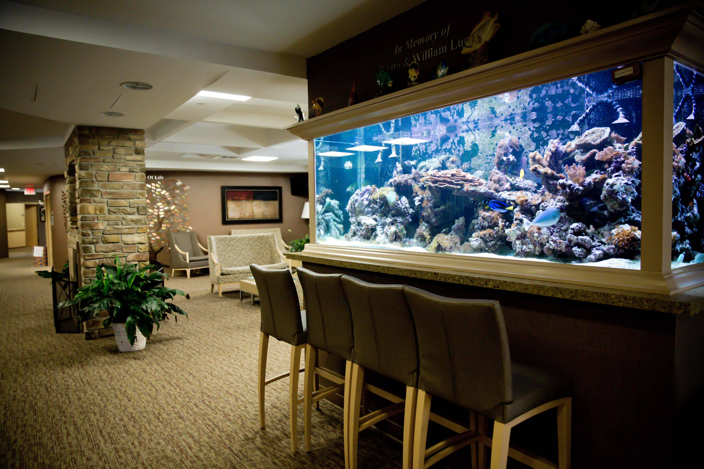 long island fish tanks